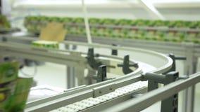 Azúcar en paquetes en el transportador en la fábrica almacen de video