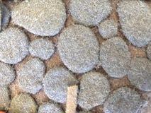 Azúcar más allá de la figura Mazapán vagetable Fotos de archivo libres de regalías