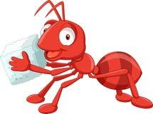 Azúcar que lleva de la hormiga roja de la historieta Fotos de archivo libres de regalías
