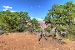 AZ盛大峡谷北部外缘海角皇家观点 免版税库存图片