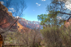 AZ盛大峡谷国家公园外缘明亮的天使足迹 免版税库存图片