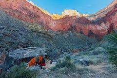 AZ盛大西部峡谷全国公园Tonto的足迹 免版税图库摄影