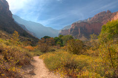 AZ-Grand Canyon-Bright Angel Trail Royalty Free Stock Photos