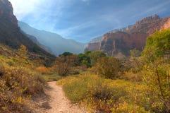 AZ-Grand Canyon-Bright Angel Trail Royalty Free Stock Photos