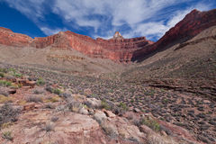AZ-Grand Canyon-Clear Creek Trail Royalty Free Stock Photo