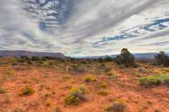 AZ-Grand Canyon National Park-N Rim-Toroweep Royalty Free Stock Photo