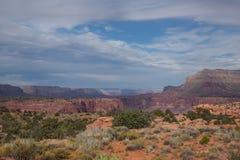 AZ-Grand Canyon National Park-N Rim-Toroweep Stock Photography
