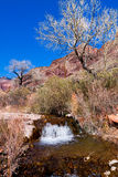 AZ-Grand Canyon-North Rim-Clear Creek Canyon Stock Image
