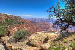 AZ-Grand Canyon-North Rim-Point Imperial area. Royalty Free Stock Image