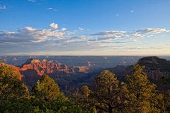 AZ-Grand Canyon-North Rim-sunset near the lodge Royalty Free Stock Images