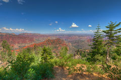 AZ-Grand Canyon-North Rim-Vista Encantata area. Stock Photography