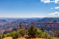 AZ-Grand Canyon-North Rim-Vista Encantata area. Royalty Free Stock Photo