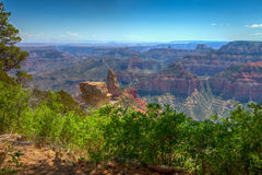 AZ-Grand Canyon-North Rim-Vista Encantata area. Royalty Free Stock Photography