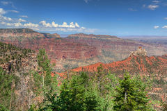AZ-Grand Canyon-North Rim-Vista Encantata area. Stock Image