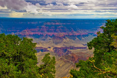 AZ-Grand Canyon NP- North Rim-Widforss Trail. The Grand Canyon is filled with spectacular color, no matter what time of day it is viewed.  The Widforss Trail on Royalty Free Stock Image
