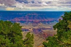 AZ-Grand Canyon NP- North Rim-Widforss Trail Royalty Free Stock Image