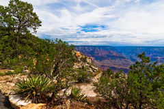 AZ-Grand Canyon-S Rim-West Rim Trail. This one of the numerous scenic views from the West Rim Trail on the S Rim of the Grand Canyon in AZ Royalty Free Stock Image