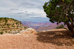 AZ-Grand Canyon-S Rim-West Rim Trail. This one of the numerous scenic views from the West Rim Trail near Powell Point on the S Rim of the Grand Canyon in AZ Stock Photo