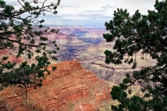 AZ-Grand Canyon-S Rim- West Rim Trail. This one of the numerous scenic views from the West Rim Trail on the S Rim of the Grand Canyon in AZ Stock Images
