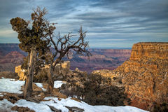 AZ Grand Canyon South Rim. This image location is Moran Point on the South Rim of the Grand Canyon at sunset Royalty Free Stock Photos