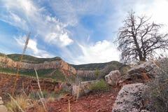 AZ-Grand Canyon-South Rim-South Bass Trail Stock Photos
