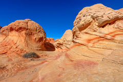 AZ-N. Coyotte Buttes-The Wave Stock Images
