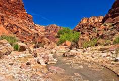 AZ- Paria Canyon Wilderness Royalty Free Stock Images