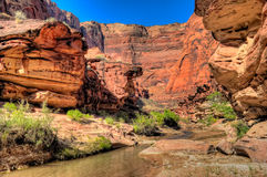 AZ- Paria Canyon Wilderness. The remote Paria Canyon Wilderness has the Paria River running through it, making for a spectacular 35 mile backpack through a Stock Image