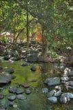 AZ-Sedona-Coconino National Forest Royalty Free Stock Photos