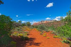 AZ-Sedona-Jim  Thompson Trail. This image was taken on the Jim Thompson Trail.  This is a path to the red rocks Royalty Free Stock Photography