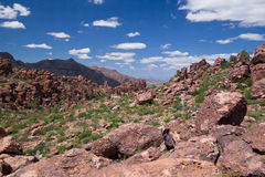 AZ-Superstition Mtn. Wilderness. This one of the numerous scenic views of the Superstition Mountain Wilderness Royalty Free Stock Photography