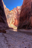 AZ-UT-Paria Canyon-Vermillion Cliffs Wilderness-Buckskin Canyon Stock Photo