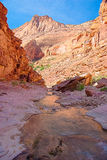 AZ-UT-Paria Canyon-Vermillion Cliffs Wilderness-Paria River Canyon Stock Photography