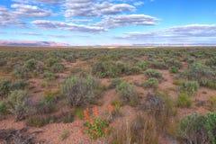 AZ-Vermilion скалы как увидено от удаленной дороги водя к глуши горы седловины на северной оправе гранд-каньона Стоковое Изображение RF