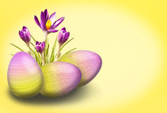 Azafrán y huevo Fotos de archivo libres de regalías