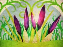 Azafranes de la primavera del Grunge Imagenes de archivo