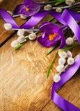 Azafranes púrpuras de Pascua en el fondo de madera foto de archivo libre de regalías