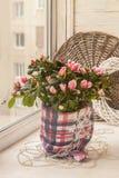 Azalée sur la fenêtre décorée d'un flocon de neige décoratif pour W Photo stock