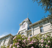Azalea bushes in bloom in front of Benton Hall, Oregon State Uni Royalty Free Stock Images