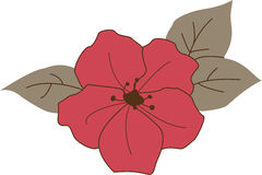 Azalea Flower. Dark pink azalea flower with leaves Stock Image