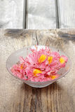 Azalea flowers in glass bowl on wooden background. Royalty Free Stock Images