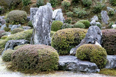Azalea garden with stones and azalea topiary Royalty Free Stock Image