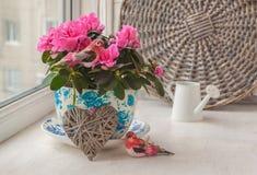 Azalea y pájaros rosados en un pote del vintage en una ventana Imagen de archivo libre de regalías