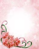 Azalee d'angolo floreali di disegno Immagini Stock Libere da Diritti