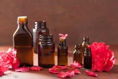 Azaleenblumen des ätherischen Öls auf dunklem rustikalem Hintergrund Lizenzfreie Stockfotografie