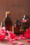 Azaleenblumen des ätherischen Öls auf dunklem rustikalem Hintergrund Lizenzfreie Stockbilder