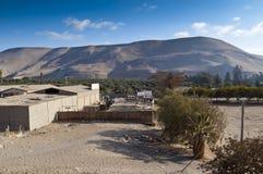 Azapa Valley, Chile Stock Photography