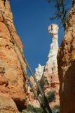 Azarento em Bryce Canyon com palha Imagem de Stock