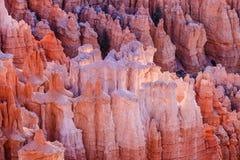 Azarentos que incandescem com luz em Bryce Canyon, Utá no nascer do sol Foto de Stock