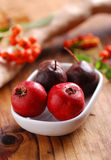 Azarole fruits Stock Images